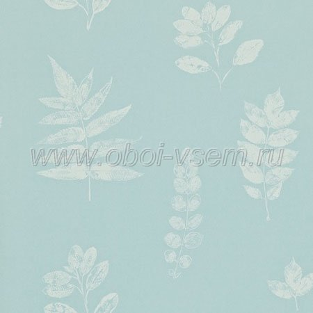 Обои  DMAD212849 Madison Wallpaper (Sanderson)