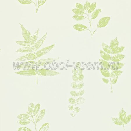 Обои  DMAD212850 Madison Wallpaper (Sanderson)