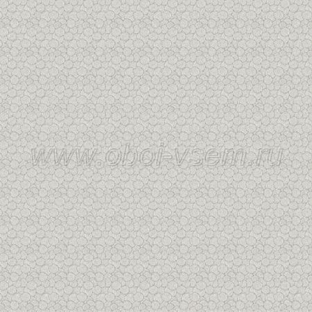 Обои  530205 Texture World (Aura)