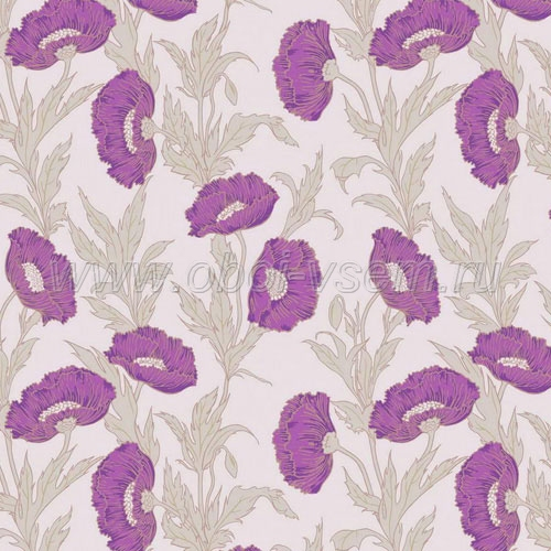 Обои  81/1002 A Collection of Flowers (Cole & Son)