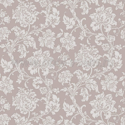 Обои  81/10042 A Collection of Flowers (Cole & Son)