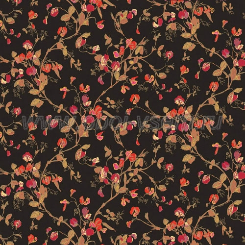 Обои  81/11046 A Collection of Flowers (Cole & Son)