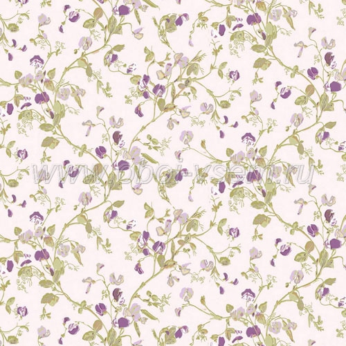 Обои  81/11047 A Collection of Flowers (Cole & Son)