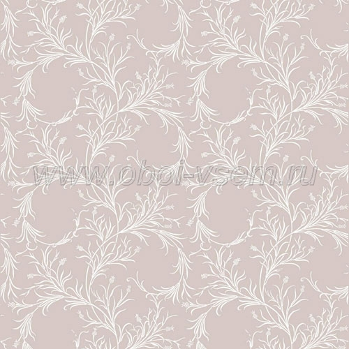 Обои  81/12050 A Collection of Flowers (Cole & Son)