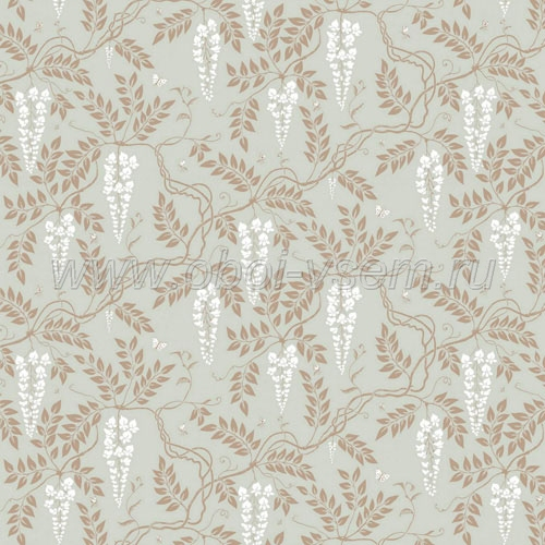 Обои  81/13055 A Collection of Flowers (Cole & Son)
