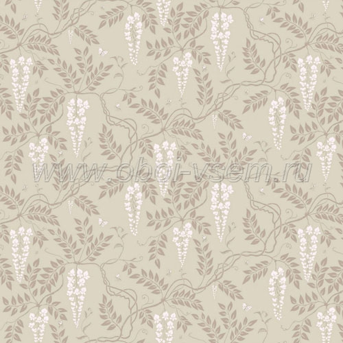 Обои  81/13056 A Collection of Flowers (Cole & Son)