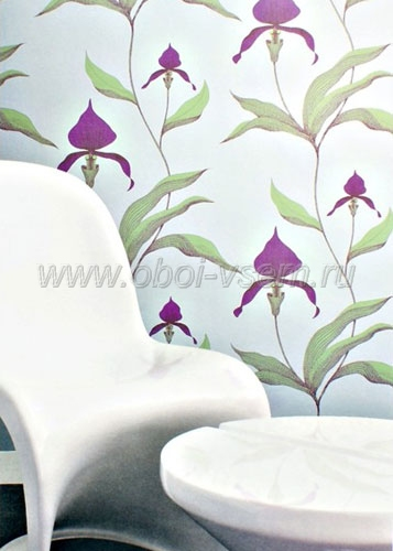 Обои  66/4027 New Contemporary Collection (Cole & Son)